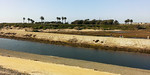 The county owned canal of the Santa Ana River runs through part of the wetlands. The river was probably used by the ancient people who lived on the mesa 9,000 to 1,000 years ago. Their ancient burial site is above the mesa on sacred ground.