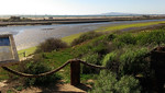 The front edge of the mesa overlooking Pacific Coast Highway and Bolsa Chica State Beach.