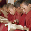 Sept 19-21, 2004, Arunachal Pradesh, India<br /> <br /> Young Bhuddist Monks raised in the monastic tradition.<br /> A typical day begins with ablutions at 5:30 a.m. Communal prayers and tea at 6, Breakfast at 8 and Lessons until noon.<br /> After lunch, the young monks engage in  lively debate, supervised by the abbot and professors.<br /> Arunachal Pradesh is formally a southern province of Tibet, annexed by the  British 1914 and remains part of India, though the region was the focal point of the Sino-India war of 1962. The region affords a unique insight into the Tibetan Bhuddist tradition, unhindered by the chinese cultural revolution and repression  which exists across the Border a hundred kilometers away.<br /> (Credit Image: © Chris Kralik/KEYSTONE Press)