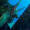 Propeller on Hilma Hooker