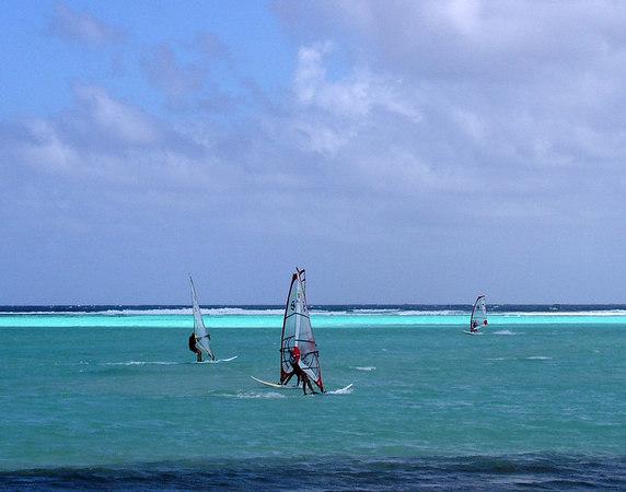Lac Bay windsurfers