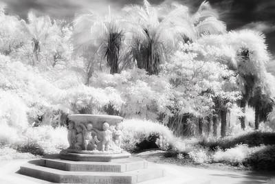 Bonzai Garden, Lake Merritt, Oakland