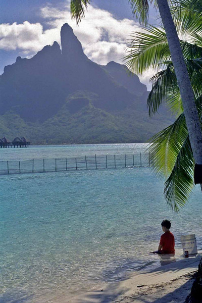 View of Bora Bora from the Lagoonanarium