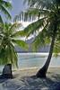 View of Bora Bora from the Lagoonanarium