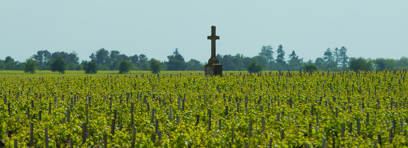 Cross in the vines by Chateau Pichon Longueville, Bordeaux France