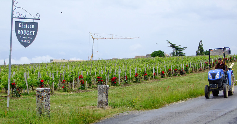 A vineyard of the Pomerol - some of the very best Grand Cru wines from the Bordeaux Region.  The Chinese are big buyers of wine from the Saint-Emilion area.