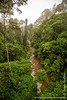 Malaysia. Borneo. Sabah. Danum Valley Conservation Area: View from Rainforest Canopy Walk