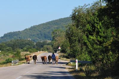 Driving from Trebinje to Mostar