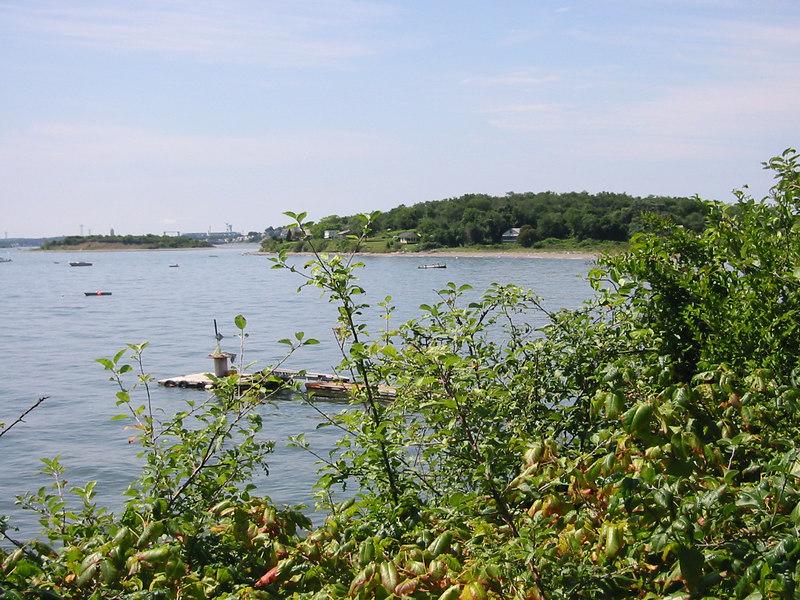 Shore of Peddock's Island
