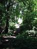 Path. Peddock's Island