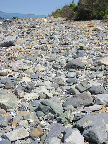 Pebble close up. Peddock's Island