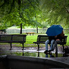 Couple sharing an umbrella in the Public Garden.  Boston, MA