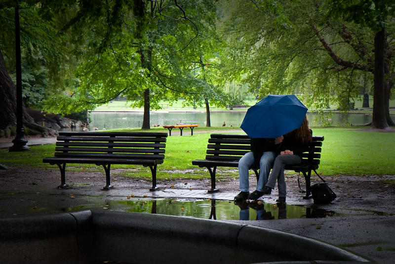 Couple sharing an umbrella in the Public Garden.  Boston, MA