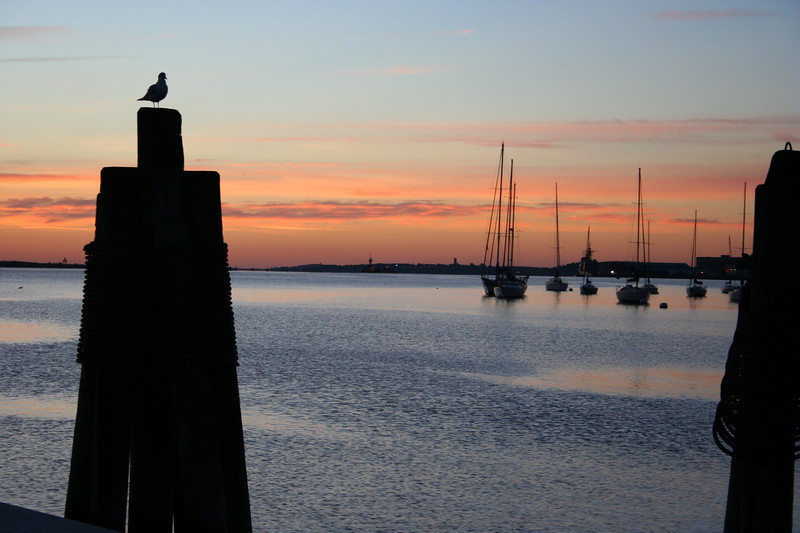 Long Wharf sunrise.