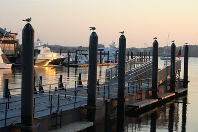 Long Wharf.