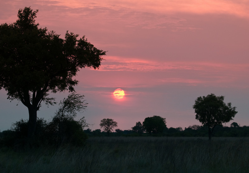 100_6971<br /> Sunset on the savanna