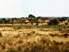and unbelievably many red termite hills (or ants? There are zillions of ant-eating chat around); this park is indeed a true birders' paradise and will surely be one of the most famous birding areas in South Africa one day, once it becomes better known. This is the main lodge and reception area.