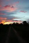 KA6P6213 Botswana, Okavanga, Game Park, Safari