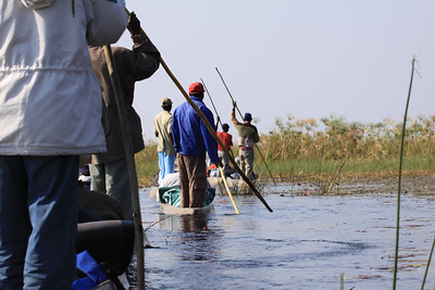 Mokoro ride through the Okavango Delta