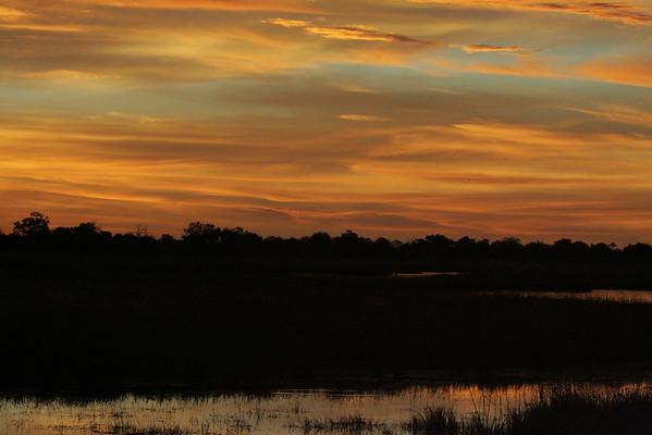 KA6P4347 Botswana, Okavanga, Game Park, Safari