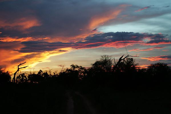 KA6P6216 Botswana, Okavanga, Game Park, Safari