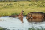 KA6P6736 Botswana, Okavanga, Game Park, Safari