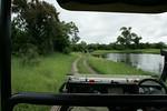 KA6P5295 Botswana, Okavanga, Game Park, Safari