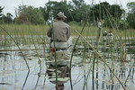 KA6P5496 Botswana, Okavanga, Game Park, Safari