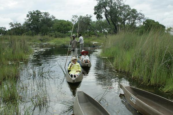 KA6P5492 Botswana, Okavanga, Game Park, Safari