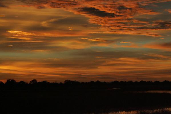 KA6P4341 Botswana, Okavanga, Game Park, Safari