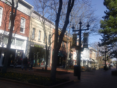 downtown walk nov 20 2011