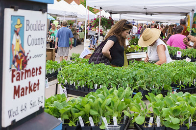Shopping at Boulder County Farmers Market
