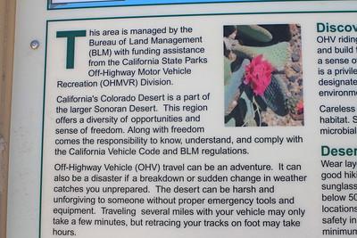 4/3/11 Meccacopia Trail, Box Canyon Road, Mecca Hills, Riverside County, CA