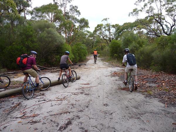 Boxing day bike ride 2010