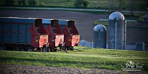 The Edsell Farm