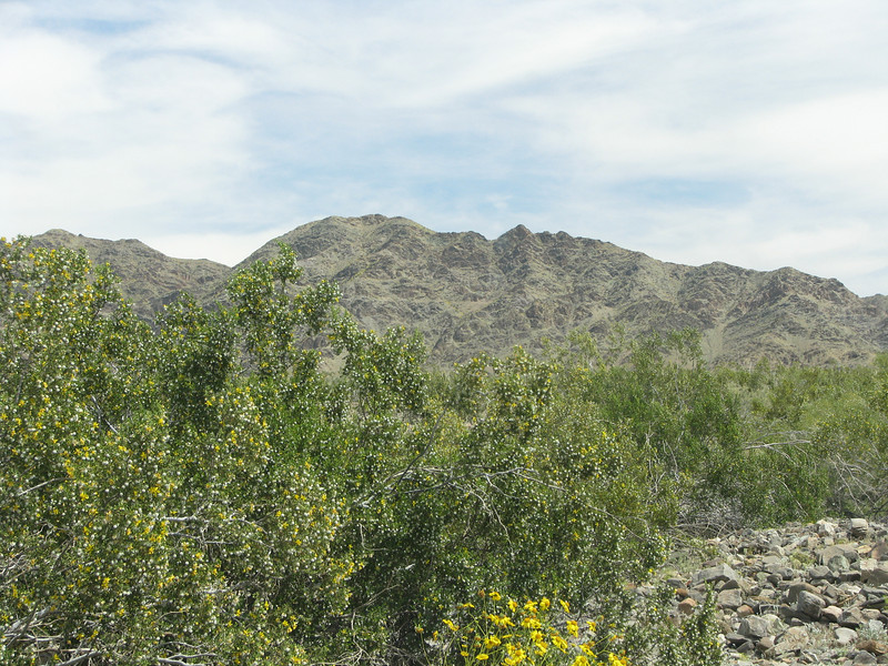 Orocopia Mountains Wilderness area can be seen fron here as we motored along the Bradshaw Trail.