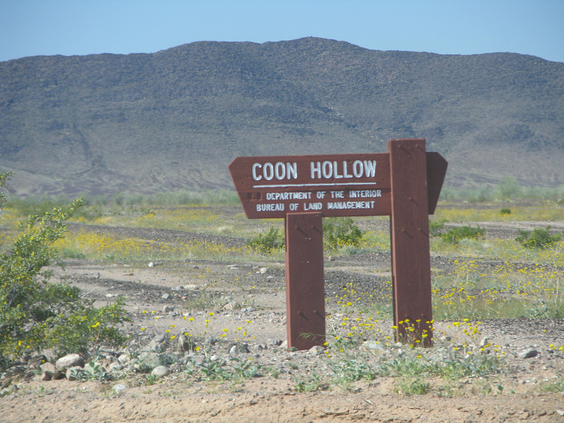 Coon Hollow campground is near by.