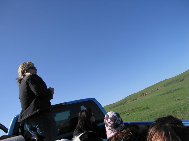 Justin T's prairie photo safari