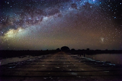 Milky way in Pantanal, Mato Grosso, Brazil