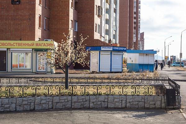 Улица Советская - дерево с лампочками в виде цветочков
