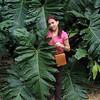 116 A Leaf as Big as Cissa
