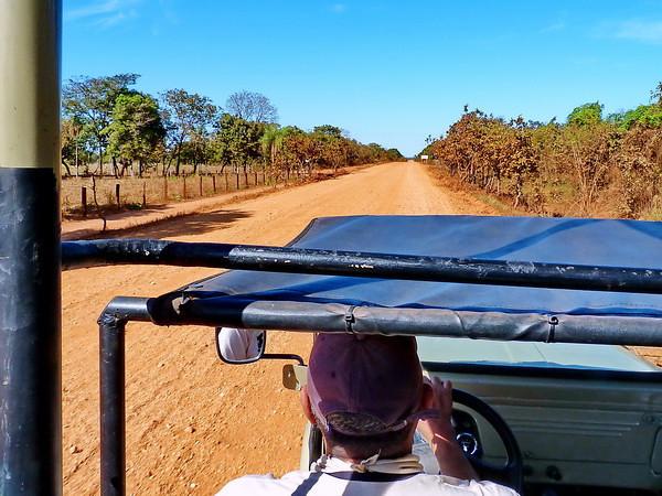 Brazil, Pantanal, Mato Grosso