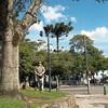 Curitiba April 2013 - 192