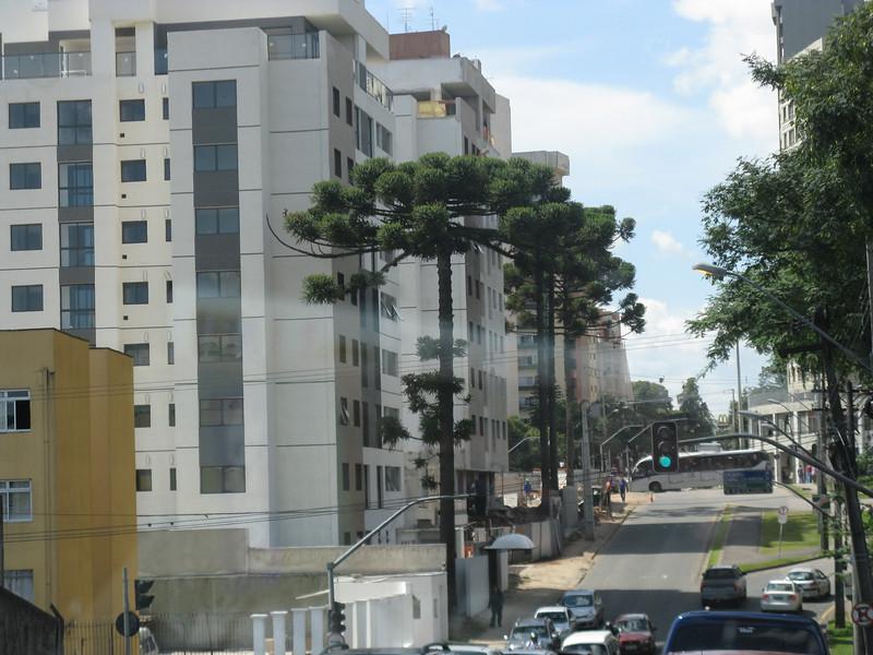 Curitiba April 2013 - 179