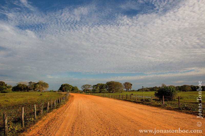 Transpantaneira Road