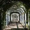 Travel; Brazil; Brasilien; Rio de Jr.; Jardin Botanico;