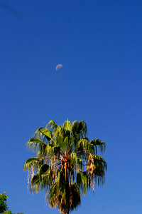 It was a beautiful day with blue skies and the moon.