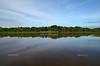 Beautiful lagoon in the Brazililan Pantanal