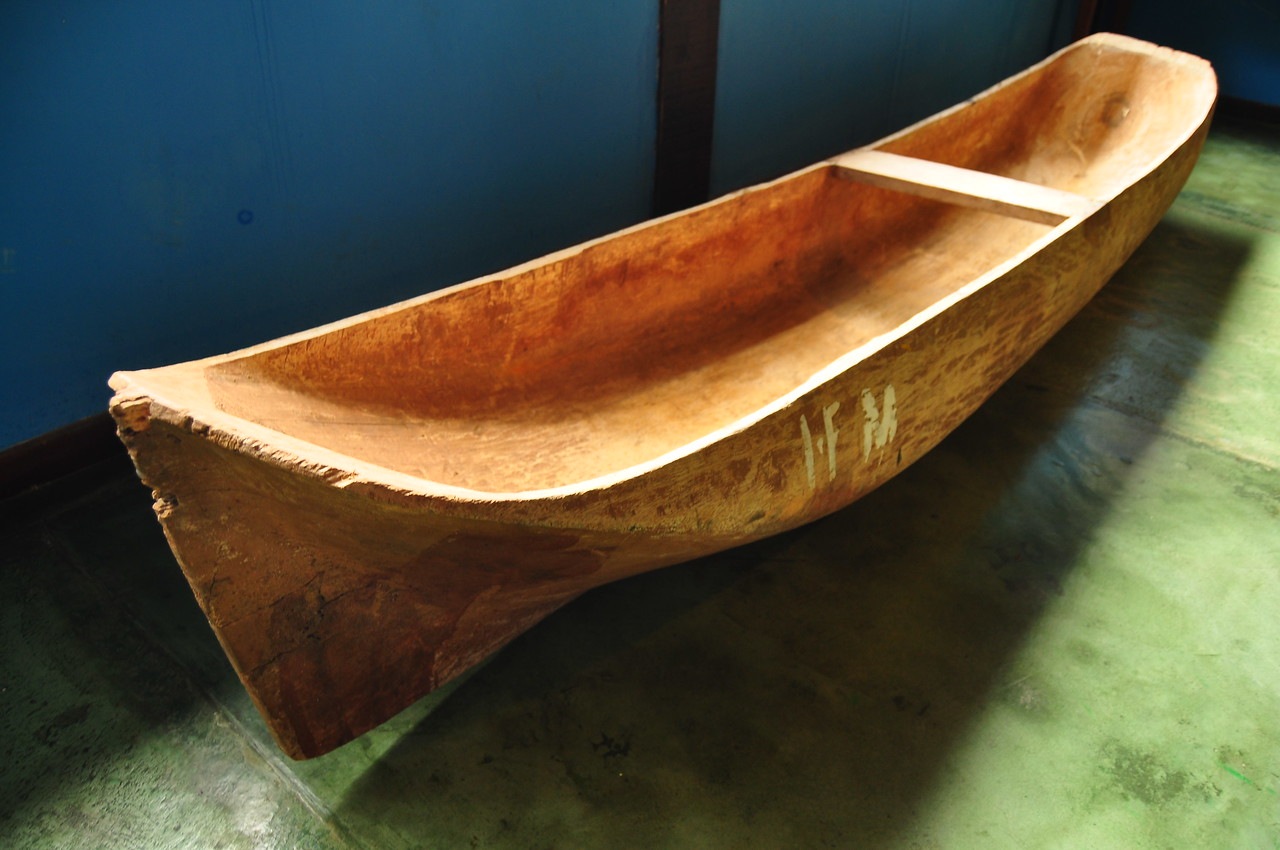 """This is a dugout canoe, at the """"Nucleo Picinguaba"""" visitor center. Dugout canoes are one of the great world unifiers, having been in use at some poin in all major coastal and riverine cultures in the world."""