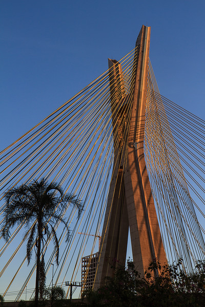 Octávio Frias de Oliveira Bridge